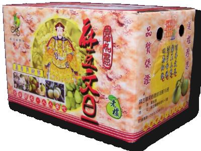 麻豆文旦10斤裝